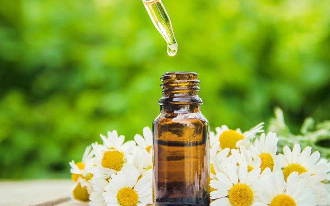 Conheça a Homeopatia